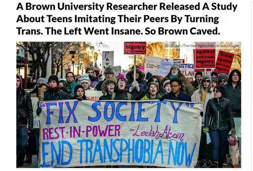 Gender dysphoria study