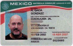 Report From Soon-To-Be Occupied America: Meddling Mexican