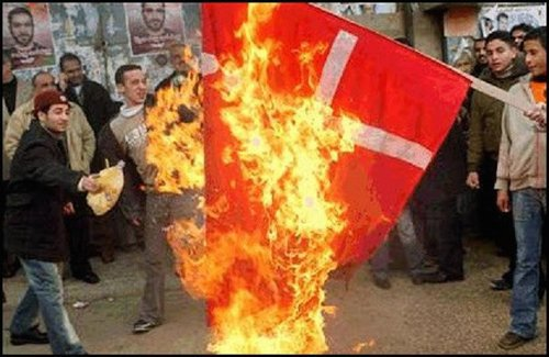 Muslims burn denmark flag1