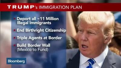 Trump deportation plan