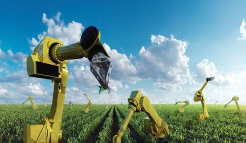 Robots to revolutionize farming ease labor woes