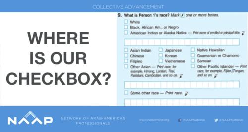 Census mena category 2015