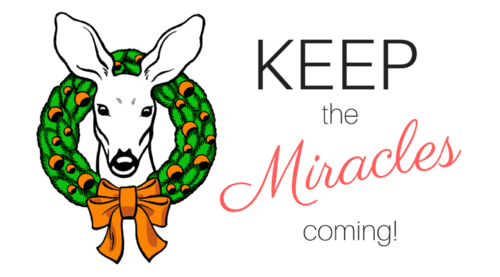Featured photo keep the miracles coming