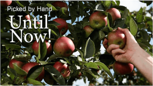 Applespickedbyhanduntilnow