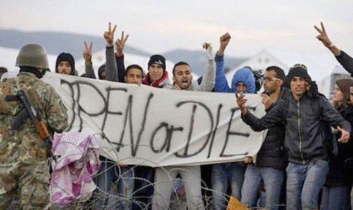 Europemigrantsopeniordiesign