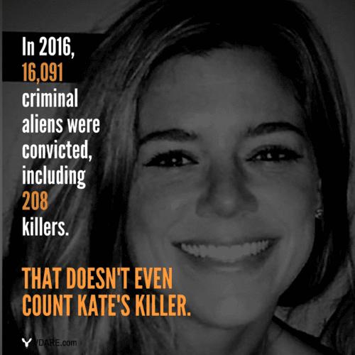 Criminal alien stats